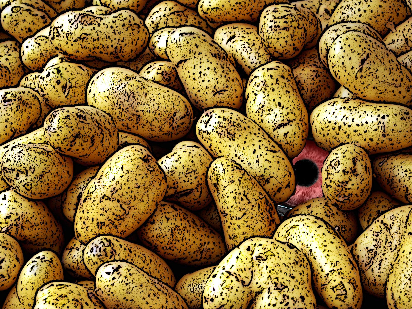 zeer kruimige aardappel